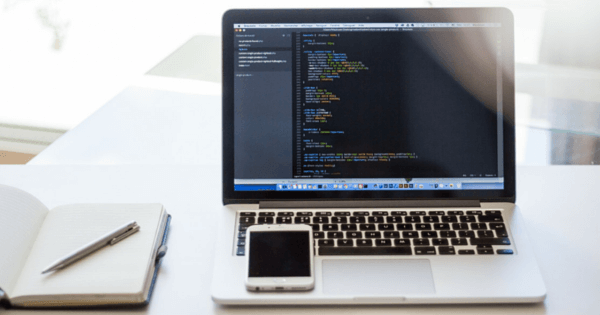 ricerca web developer cuneo